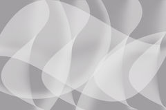 Curve of white. On gray background Royalty Free Stock Image