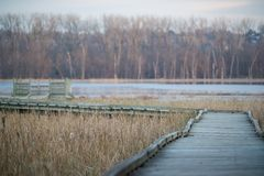 Curved boardwalk walking path to an observation deck - in the fall on the Minnesota River in the Minnesota Valley National Wildlif stock images