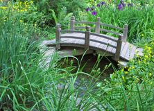 Curved bridge accents wetland garden. Curved wooden bridge over stream in wetland garden featuring Japanese irises Royalty Free Stock Images