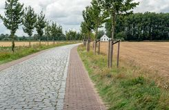Curved cobblestone road with trees on both sides. Dutch landscape with a curved cobblestone road, stubble fields and trees on both sides of it and a white stock photography