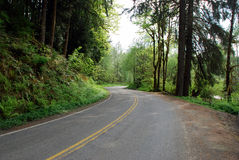 Curved country road. Looking down a curved country road Stock Photography