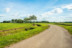 Curved country road in a Dutch polder landscape. With fresh green grassland. In the middle of the image is a row of trees. It is a sunny autumn day. The sky is royalty free stock photo