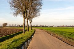 Curved country road with mud and puddles in a Dutch polder lands stock photos