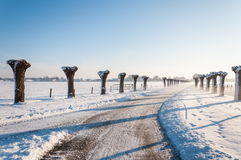 Curved country road in wintertime Stock Images