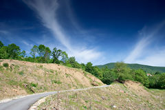 Curved empty road and greenery Royalty Free Stock Image