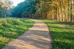 Curved footpath in a Dutch park in the early morning sun stock images
