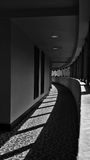 Curved Hallway. Vertical photo of a curved hallway. There are repeating shadows cast by the windows and light. Image is processed in black and white monochrome Royalty Free Stock Photography
