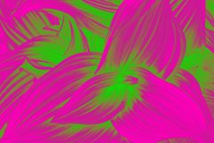 Curved leaves abstract texture. Pink and green vivid gradient effect stock photography