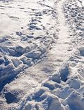 Curved natural snow path. In winter sunlight Sweden in January Stock Photo