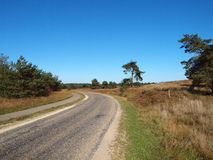 The curved path Stock Image