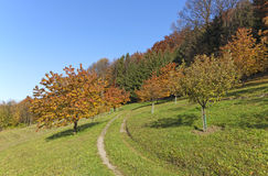 Curved path through autumn landscape Royalty Free Stock Photos