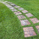 Curved path on a lawn Royalty Free Stock Photography
