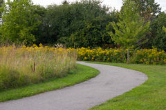 Curved path in a park Royalty Free Stock Images