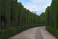 Curved pathway in the gardens of Alhambra Royalty Free Stock Photo
