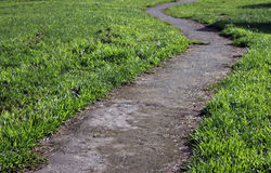 Curved pathway with green grass Stock Images