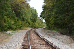 Curved railroad tracks in woods Stock Image