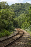 Curved railway tracks in a forest Royalty Free Stock Photos