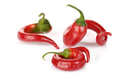 Curved red chilli peppers Royalty Free Stock Image
