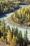 Curved river through gold woods Royalty Free Stock Image