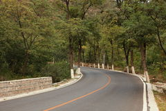 Curved road. A curved road uphill with flourish trees Stock Images