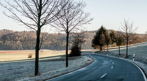 Curved road. Curved icy road in the middle of meadows royalty free stock photography