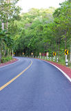 Curved road. In the forest royalty free stock photography
