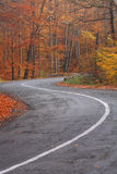 Curved road Stock Images