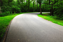Curved Road. This is a shot of a curved road in a small country forest. It is located in Ohio Stock Images