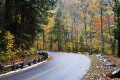 Curved road in autumn. Royalty Free Stock Photography