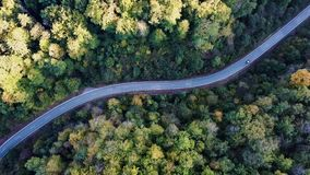 Curved road with cars and beautiful forest landscape. Winding street between the trees filmed from above with drone stock footage
