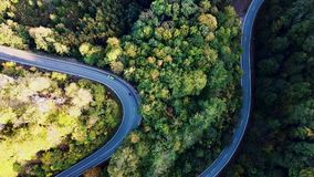 Curved road with cars and beautiful forest landscape. Winding street between the trees filmed from above with drone stock video footage