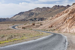 Curved road through desert Stock Photo