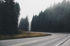 Curved Road by Forest Stock Photos