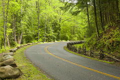Curved road in forest Royalty Free Stock Photo