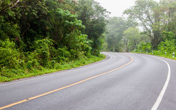 Curved road and green trees to travel Stock Photography