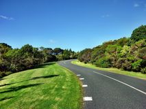 Curved road. In Shakespear Regional Park near Auckland Stock Photo