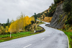 Curved Road Stock Image