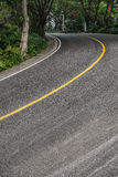 Curved road with trees Royalty Free Stock Photo