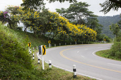 Curved road with trees and flowers Stock Image