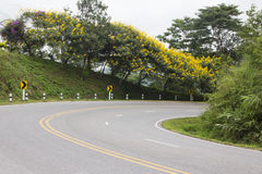 Curved road with trees and flowers Royalty Free Stock Photos