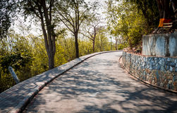 Curved road with trees Royalty Free Stock Images