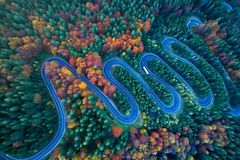 Curved road trough the colorful autumn forest royalty free stock images