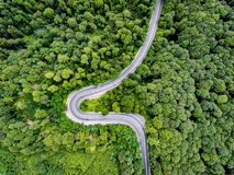 Curved road trough the forest viewed from above Stock Image