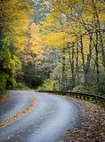 Curved road twists through fall color in the mountains. Curved road twists through fall color in the  NC mountains Stock Photography