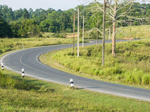 Curved road. The two - lane curved road run across the conserved  forest Stock Photo