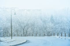 On a curved road in winter Stock Image