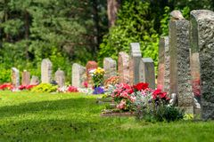 Curved row of grave stones with red and pink flowers