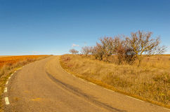 Curved rural road Stock Images