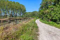 Curved rural road in Piedmont, Italy. Royalty Free Stock Images