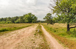 Curved sandy path in a nature reserve. Curved sandy path with small weathered white concrete posts in a Dutch nature reserve on a cloudy day in the summer season Stock Image
